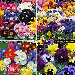 Winter Bedding Bumper Pack