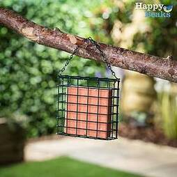 Suet Blocks - Berry (3 Pack)