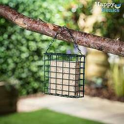 Suet Blocks - Seeded (3 Pack)