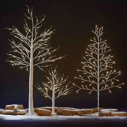 36 LED 60cm Silver Birch Tree