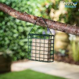 Suet Blocks  Seeded (3 Pack)