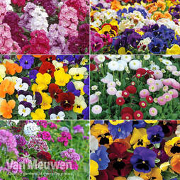 Winter Bedding Assortment